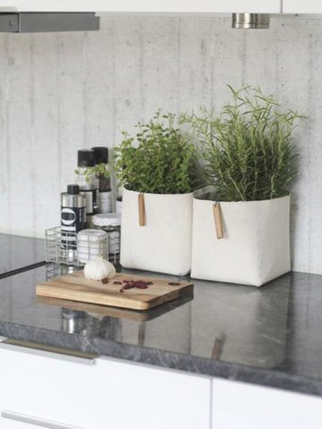 Most Fabulous Kitchen Counter Decorating