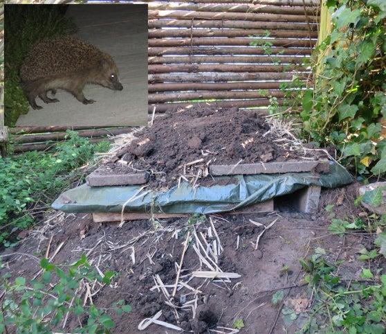 19-DIY-Hedgehog-Pallet-Home