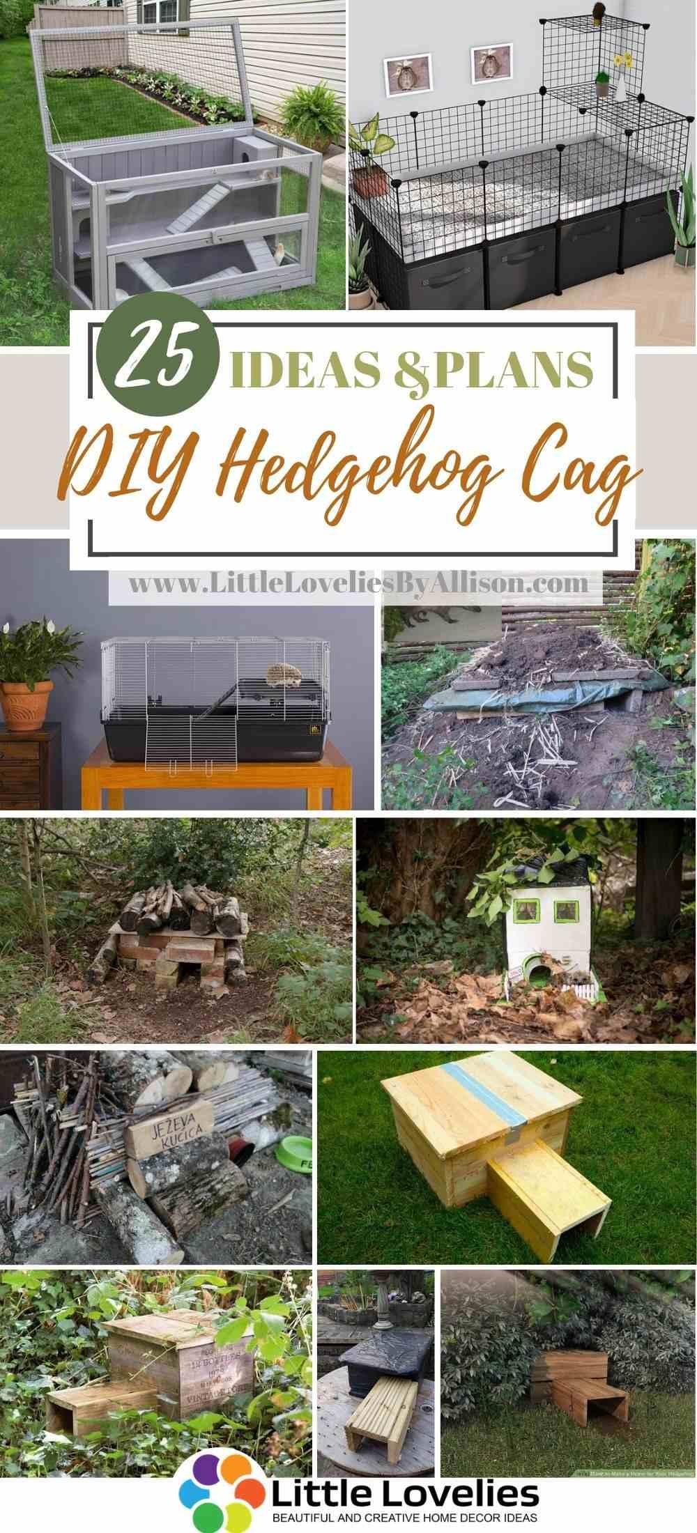 Best-DIY-Hedgehog-Cage