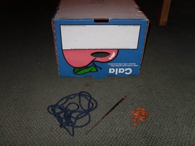 2-DIY-Squirrel-Trap