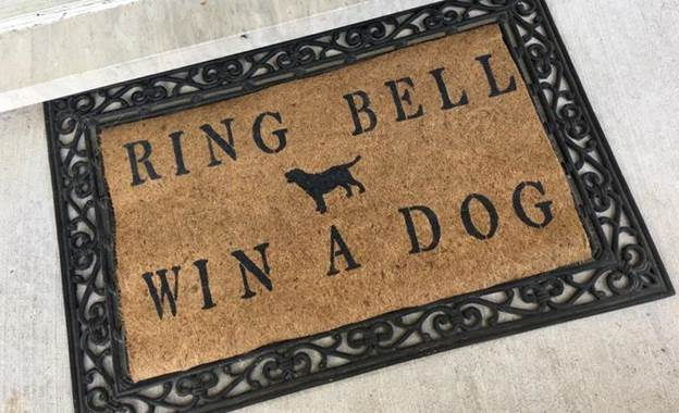 21-DIY-Doormat-For-Pet-Lovers