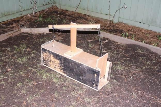 3-DIY-Trap-For-Squirrels