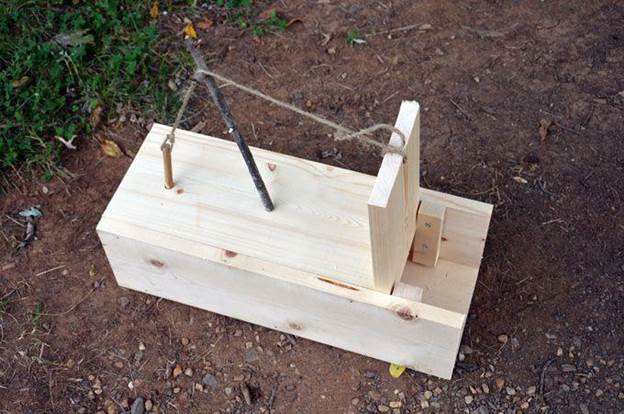 5-How-To-Build-A-Box-Trap-For-Squirrel