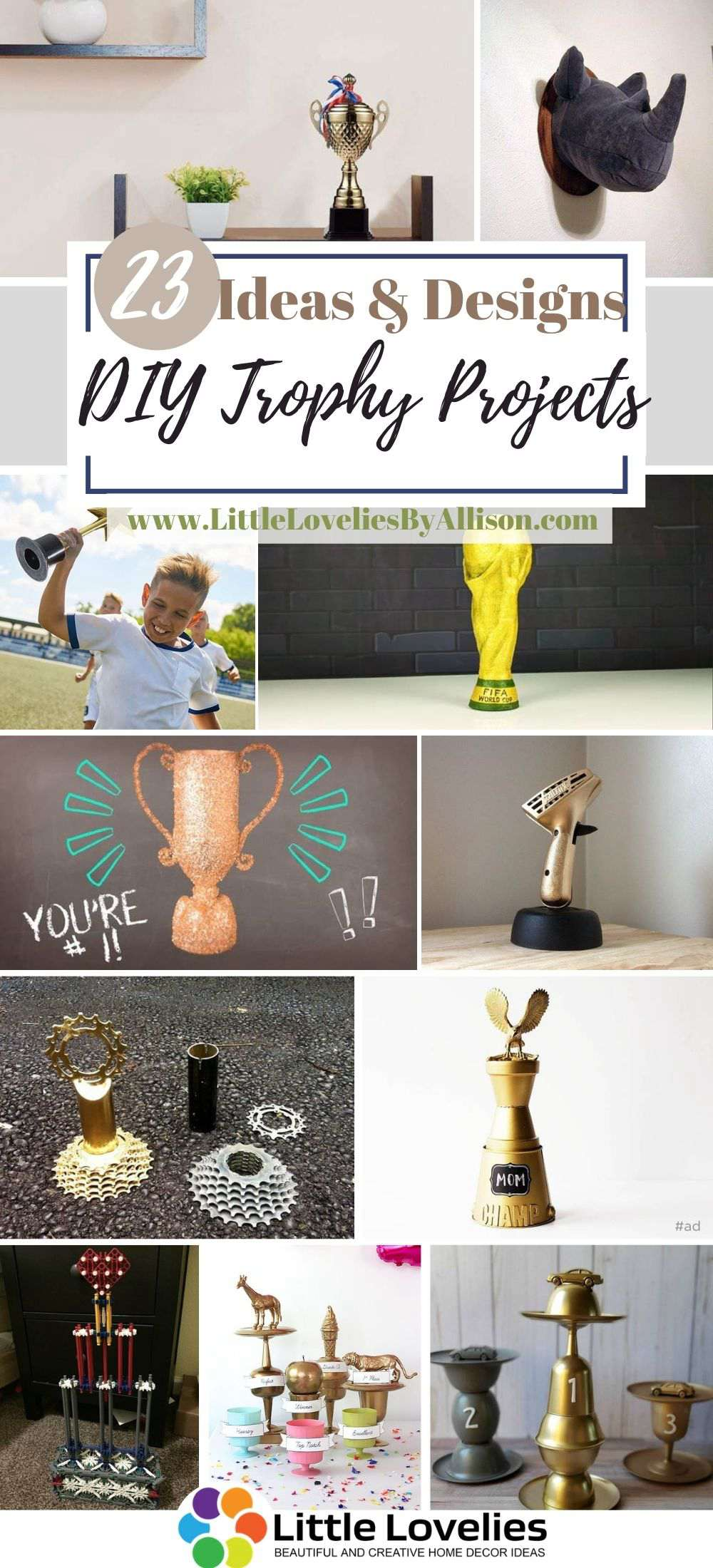 Best-DIY-Trophy-Projects
