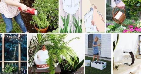 DIY-Watering