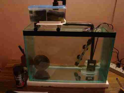1-Easy-Aquarium-Sump-Filter