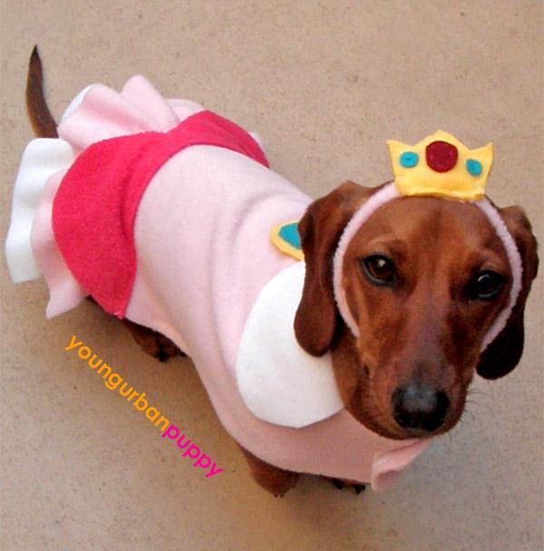15-Princess-Peach-Dog-Costume-Idea