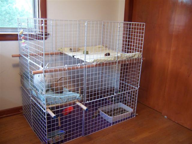 16-How-To-Make-A-Bunny-Cage
