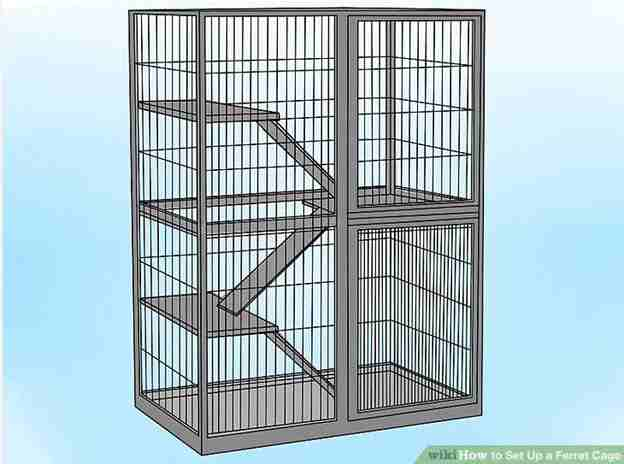 2-How-To-Setup-A-Ferret-Cage