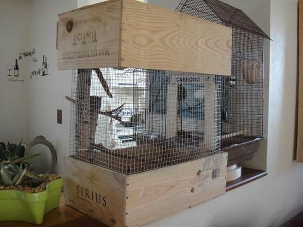 20-DIY-Wine-Box-Bird-Cage