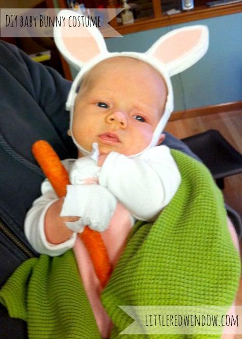23. New Born Baby Bunny Costume