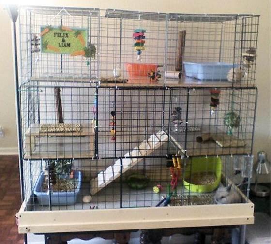 3-DIY-Cube-Rabbit-Cage