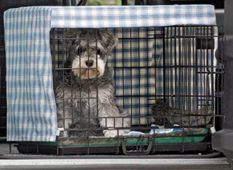 3-Protective-Crate-Cover