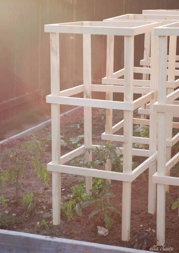 5-DIY-Cages-For-Tomato