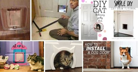DIY-Cat-Door