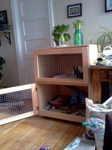 DIY Ferret Cage Ideas