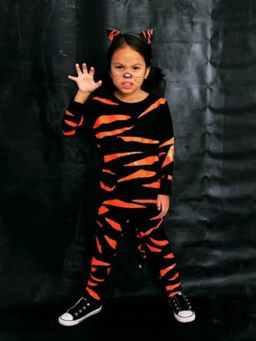 DIY Tiger Costume Projects