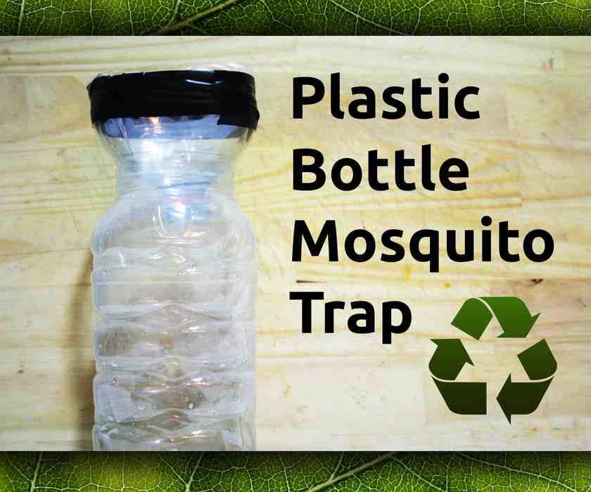 1-Simple-Bottle-Trap
