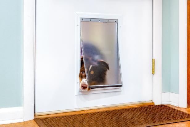 10.-How-To-Install-A-Dog-Door-In-A-Metal-Door