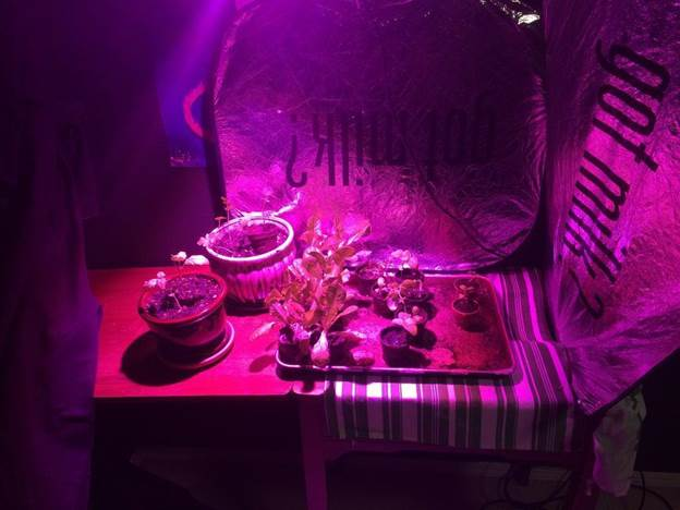 11-100W-LED-Grow-Light