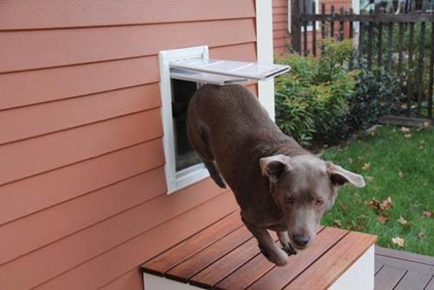 11-DIY-Dog-Door-Installation