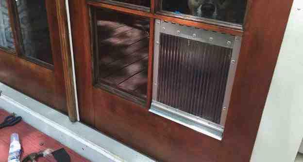 16-DIY-Window-Pane-Dog-Door