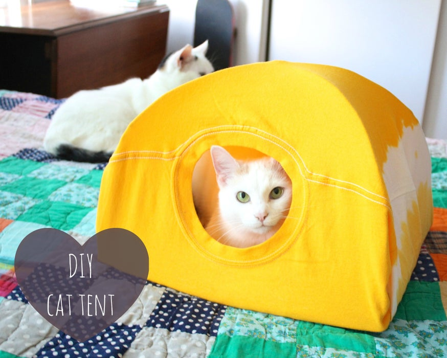 2-Indoor-Cat-Tent