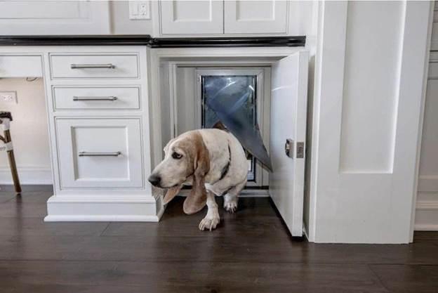 20-How-To-Build-A-Hidden-Cabinet-Doggy-Door