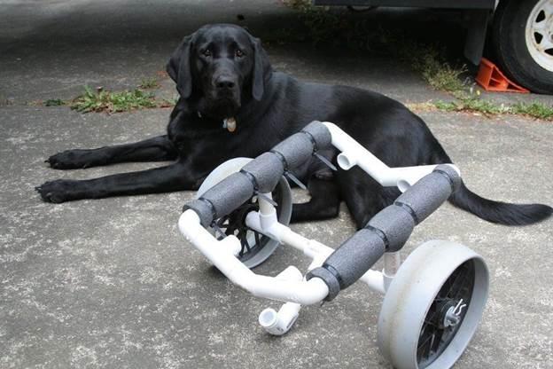 4-DIY-PVC-Kayak-Cart