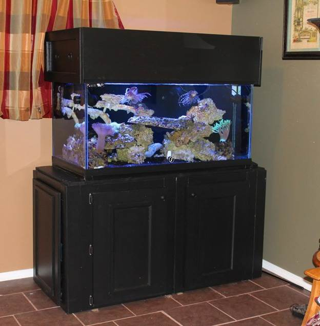 5-Building-An-Aquarium-Stand