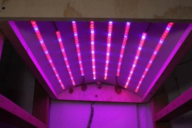 5-DIY-LED-Grow-Light