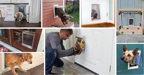 DIY-Dog-Door-Projects