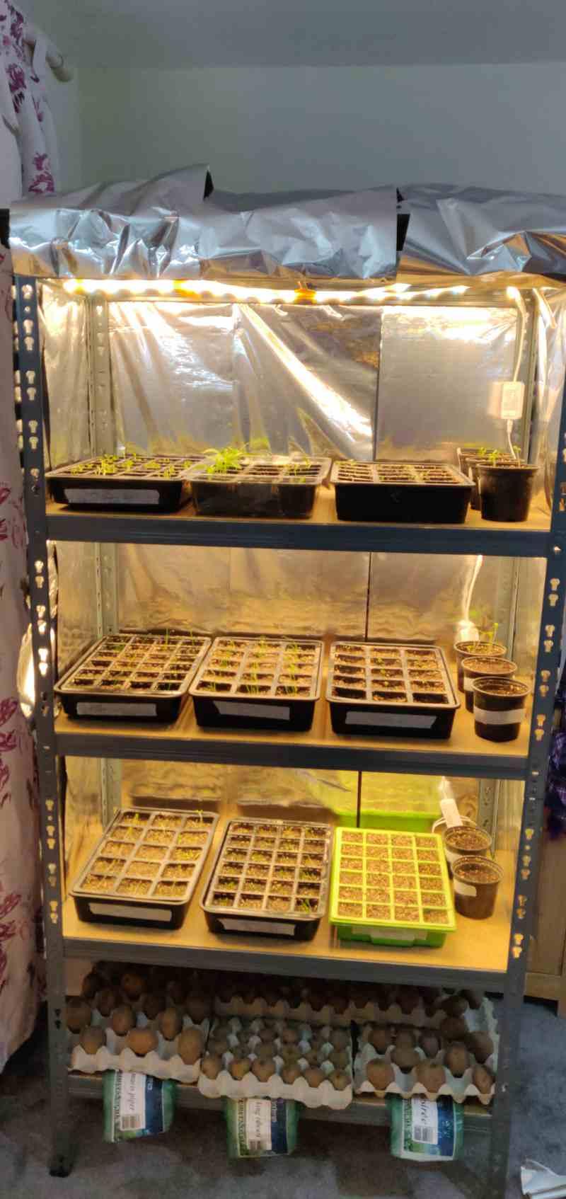 17-Cloning-Grow-Tent
