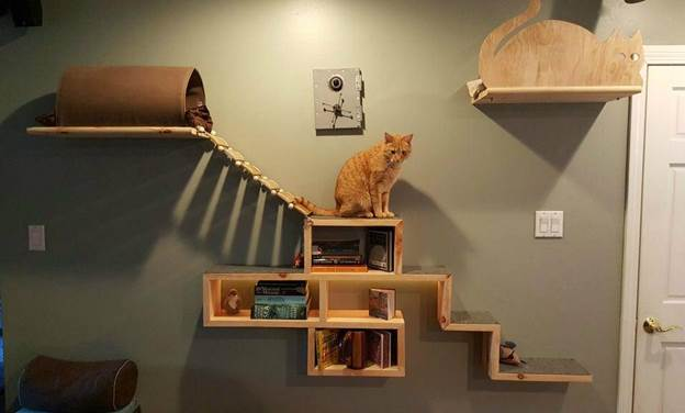 18-DIY-Cat-Adventure-And-Escape-Wall