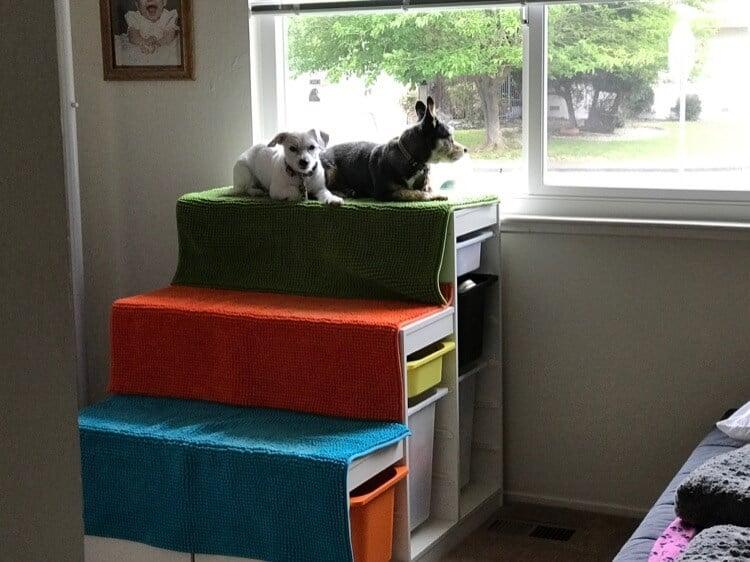 18. Improvised Window Perch