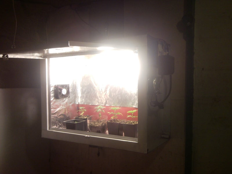 19-Indoor-Seedling-Grow-Box