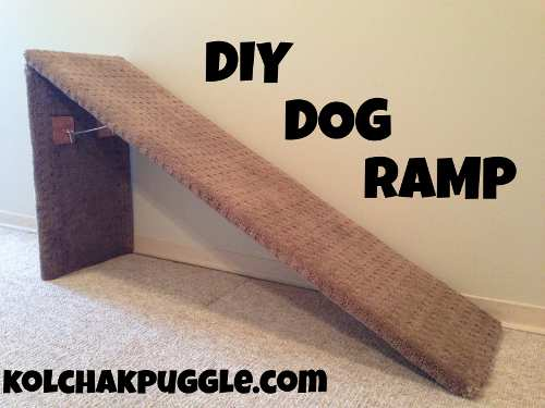 19. Collapsible Dog Ramp
