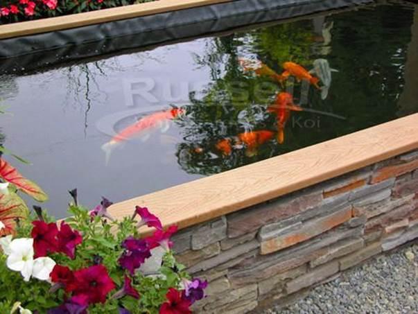 2-Building-A-Koi-Pond