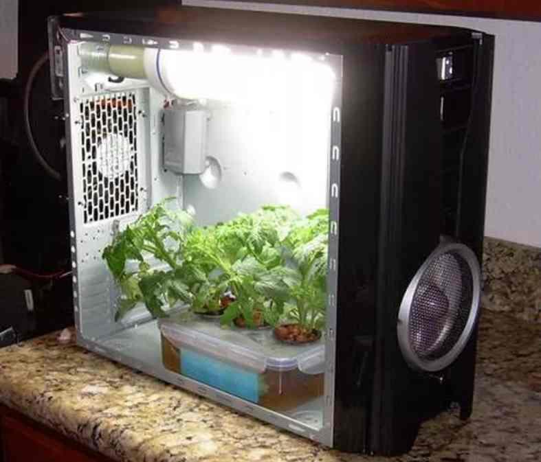 2-PC-Casing-Grow-Box