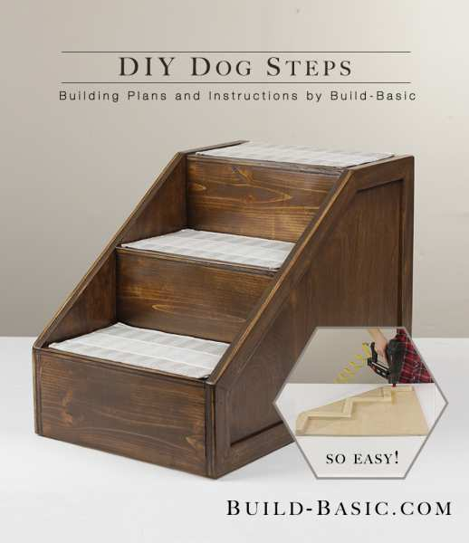 21. Stepped Ramp for Dog
