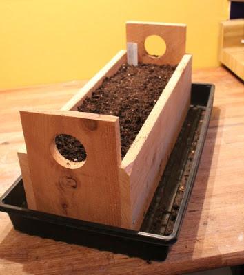 3-Portable-Grow-Box