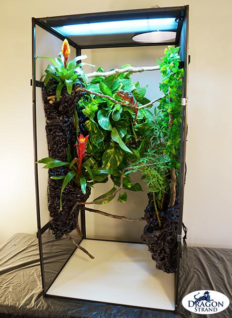 4. Chameleon Cage Setup