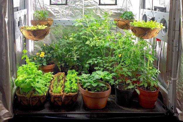 4. How to Make A Grow Tent