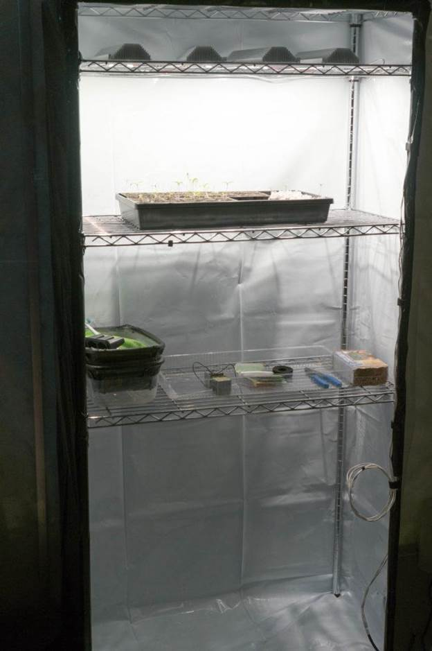 6. How to Build A Grow Tent Under $100