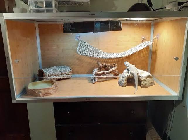 7. Bearded Dragon DIY Reptile Enclosure Plan