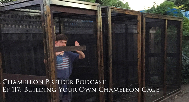 7. Everything on Chameleon Cage