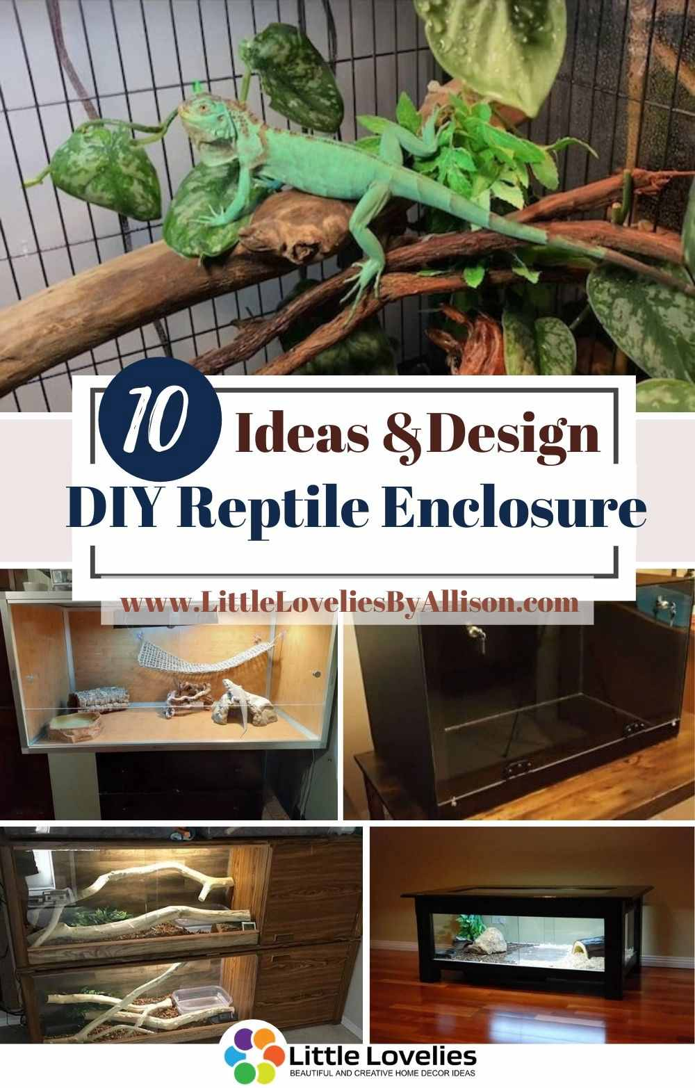Best-DIY-Reptile-Enclosure-Plans