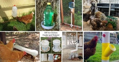 DIY-Chicken-Waterer