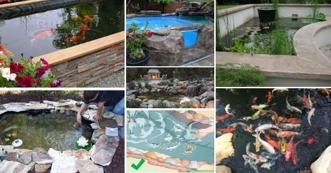DIY-Koi-Pond-Projects