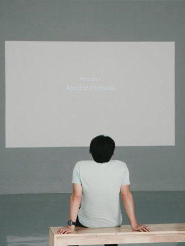 DIY Projector Screen Plans